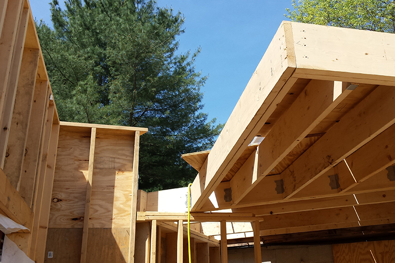 Affordable Home Design: Efficient + Cost-Effective House Construction