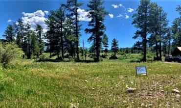 Commercial Parcel – South Fork, CO