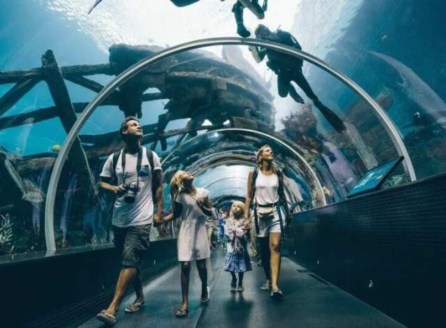Image result for kids in aquariums reading