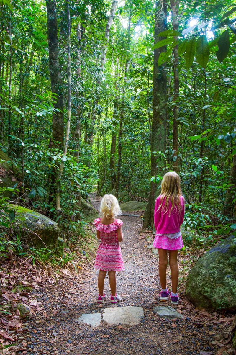 Finch Hatton Gorge near Mackay in Queensland, Australia