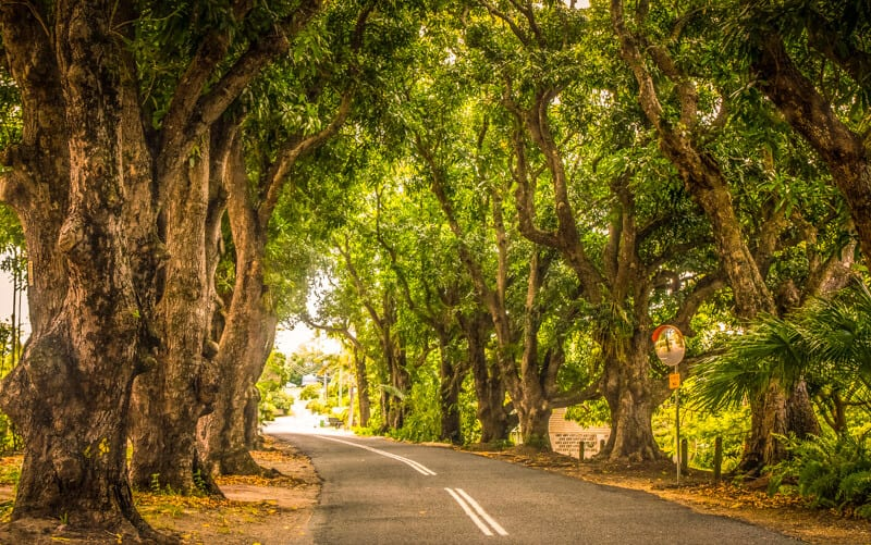 Mango Avenue in Eimeo Beach Mackay