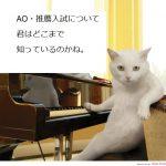 AO・推薦入試の入試方式について
