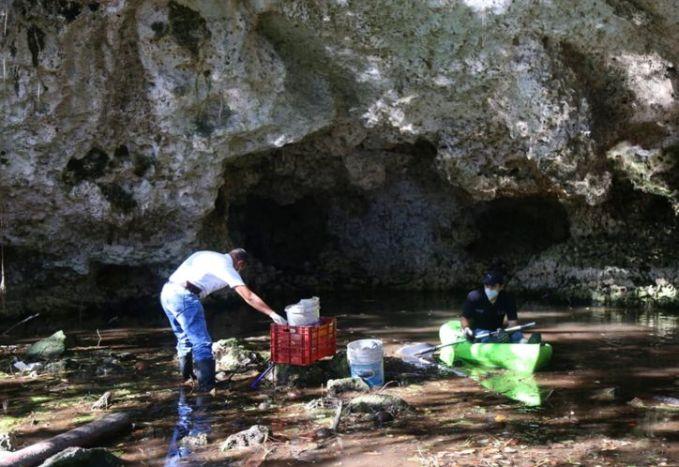 Aumenta contaminación del agua en Quintana Roo por desidia de Semarnat –  Yucatán a la mano