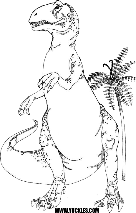 allosaurus coloring page by yuckles