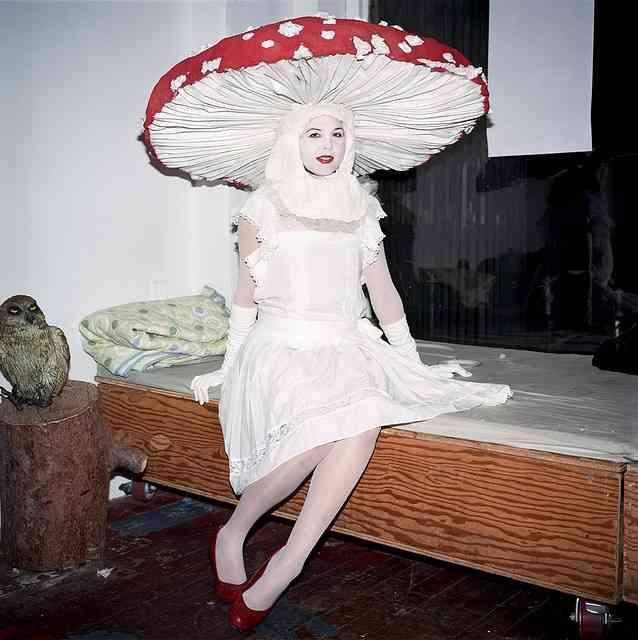 Mushroom/Toadstool outfit