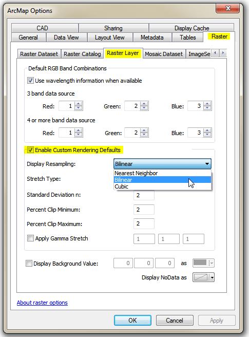 Arcmap Raster Options dialog panel