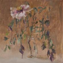 White peony, 40-40cm. oil on canvas