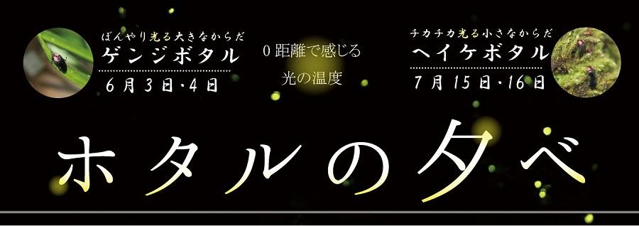 hp_hotaru bn