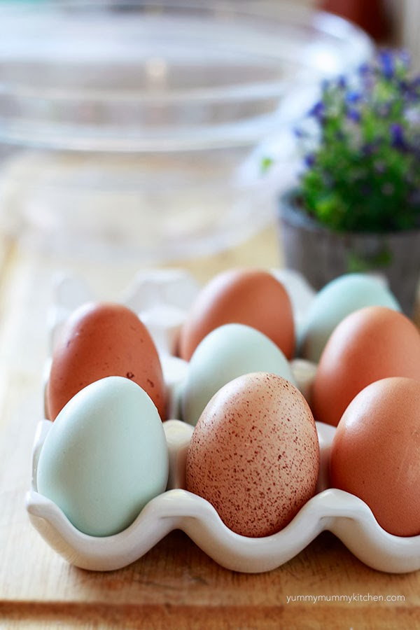 Beautiful blue and brown backyard chicken eggs in an egg dish.