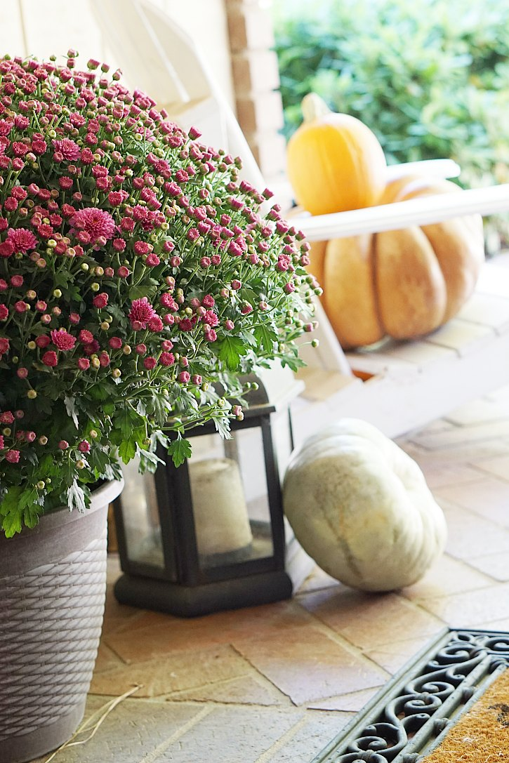 Mums, lanterns, pumpkins, and more fall front porch ideas and inspiration.