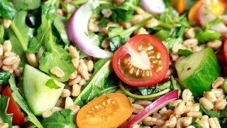 Italian Farro Salad