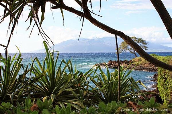 Wailea Maui walking path