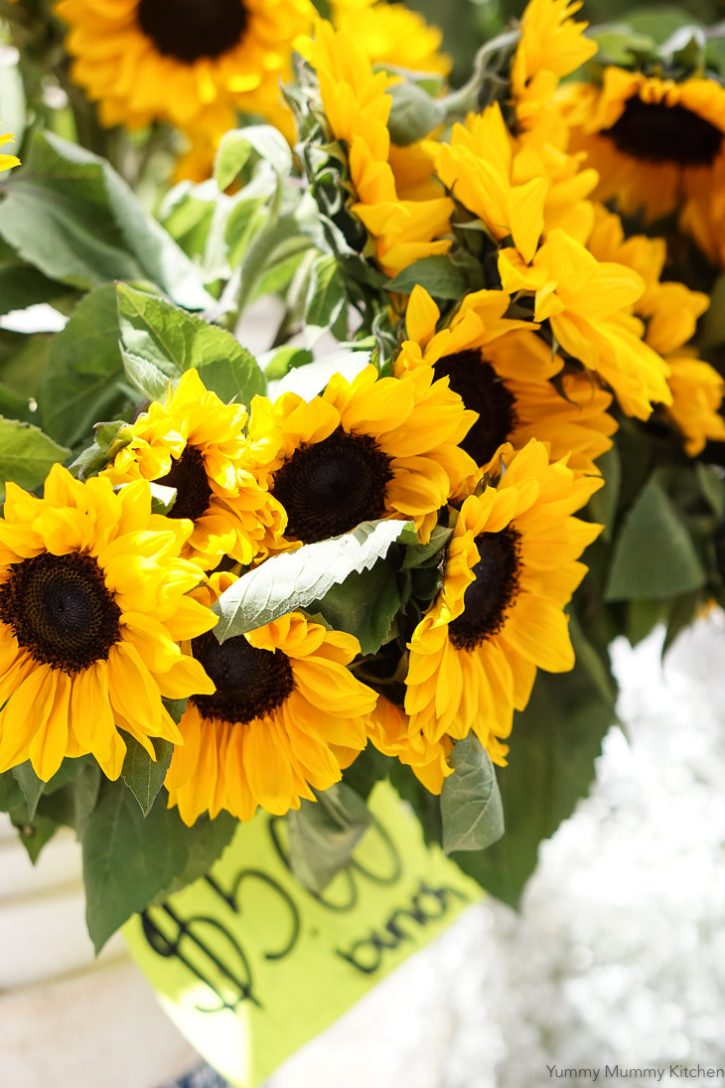 A beautiful photo of Santa Barbara farmers market sunflowers.