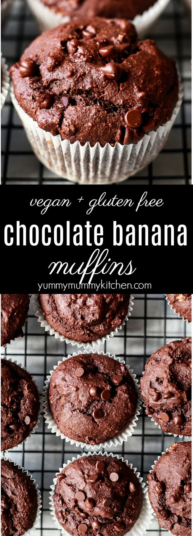 The best vegan gluten free chocolate banana muffins made with healthier ingredients like almond flour and oat flour. These easy chocolate muffins are sweetened naturally with bananas and maple syrup. Chocolate banana muffins make a delicious breakfast, brunch, after school snack, or dessert.
