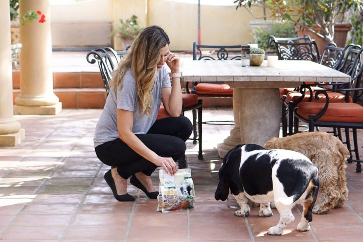 A woman crouches down with a bag of healthy real dog food from Freshpet to feed a Basset hound and an English cocker spaniel.