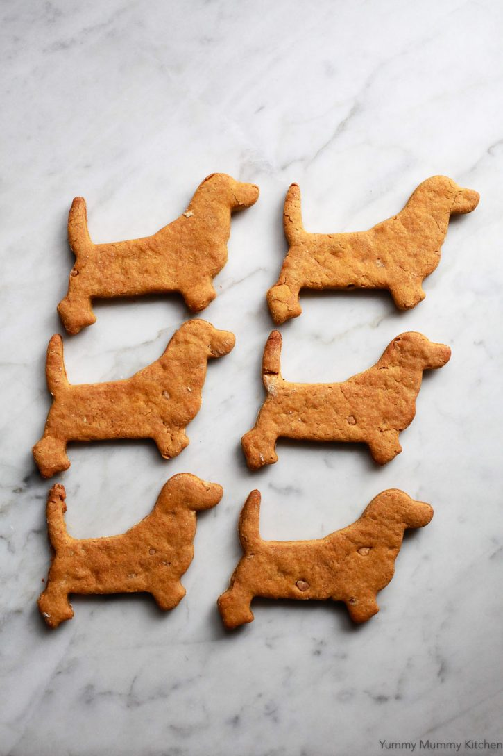 Freshly baked homemade peanut butter pumpkin dog treats on a marble countertop.