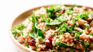 Warm Grain Salad with Cranberries