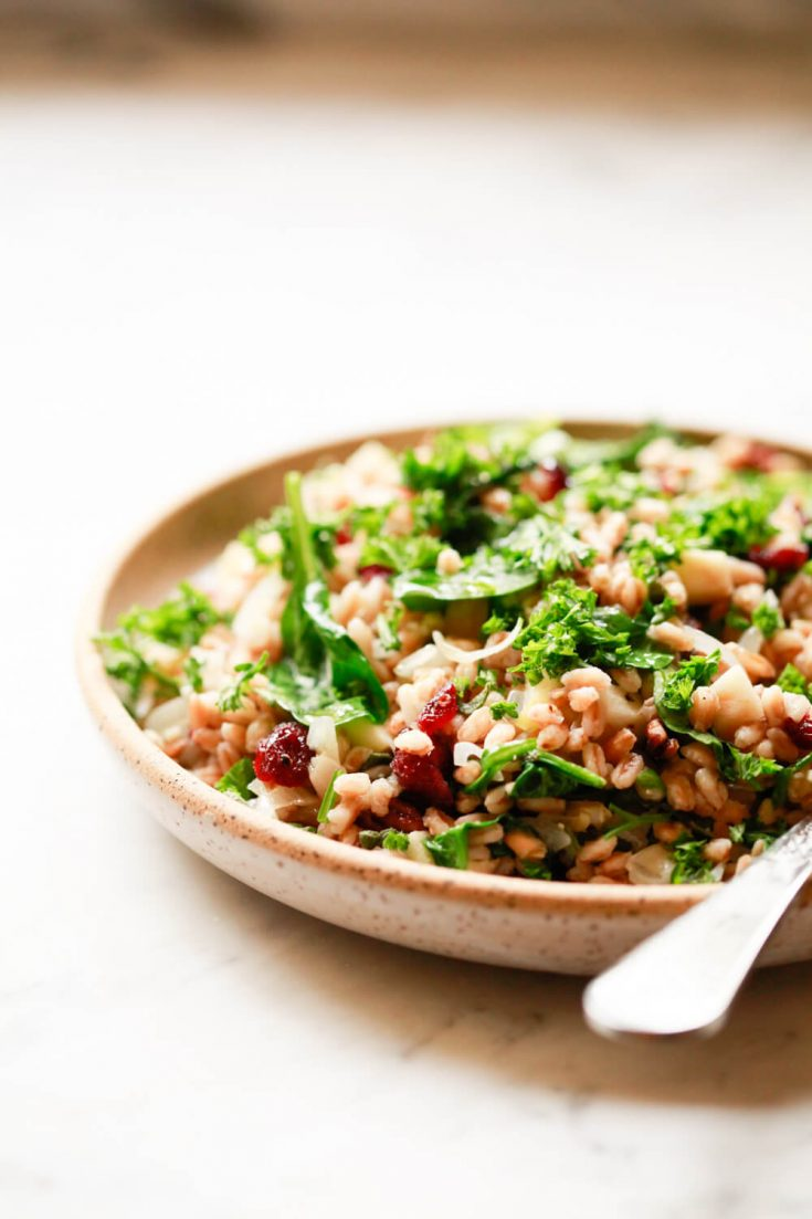 Warm farro salad with cranberries, wilted spinach, pecans, and herbs is a beautiful holiday side dish recipe.