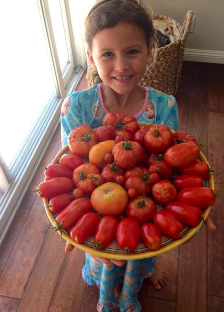 A little girl holding a large platter filled with various homegrown garden tomatoes.