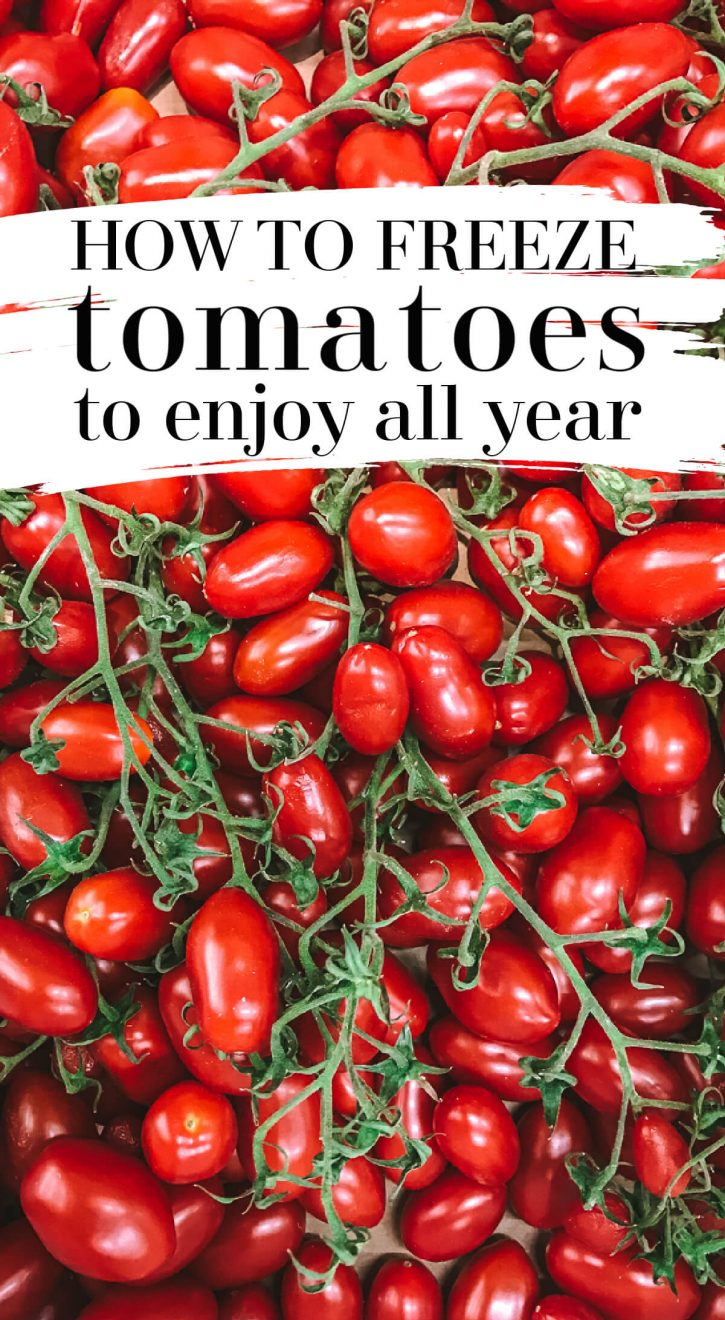 Beautiful small San Marzano tomatoes on vines. Find out how to freeze tomatoes, from whole to cherry to green, the quick and easy way. Perfect for spaghetti sauce and no need to blanch.