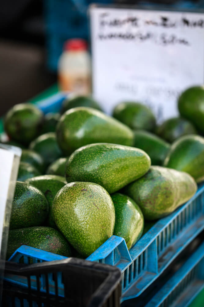 A crate filled with bacon avocados at the Santa Barbara farmers market.