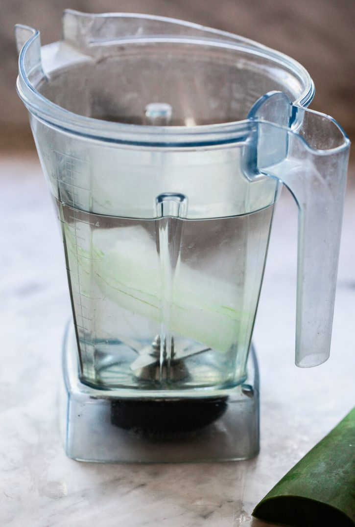 A piece of aloe vera and water in a Vitamix blender to make aloe vera juice.