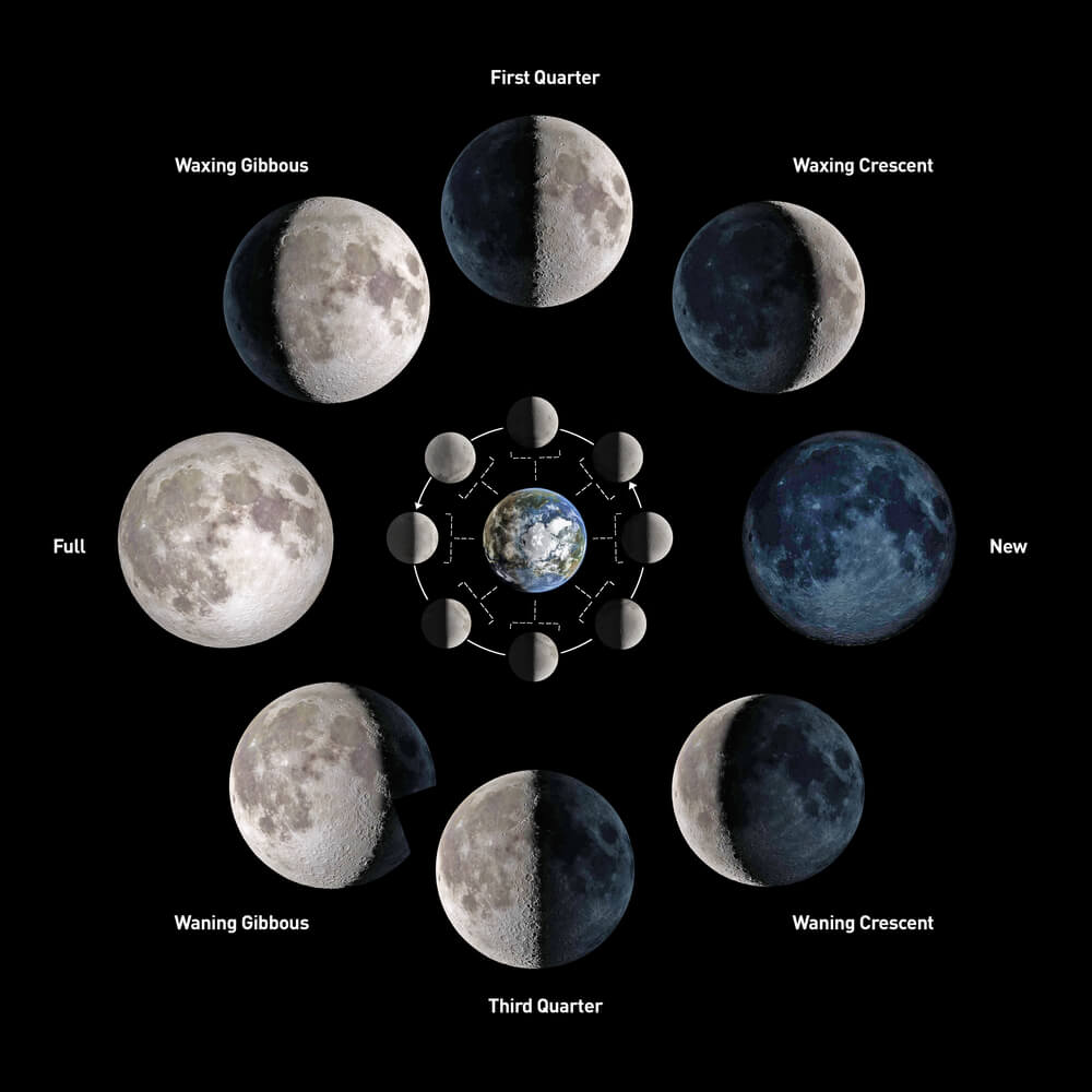 A graphic of the moon phases.