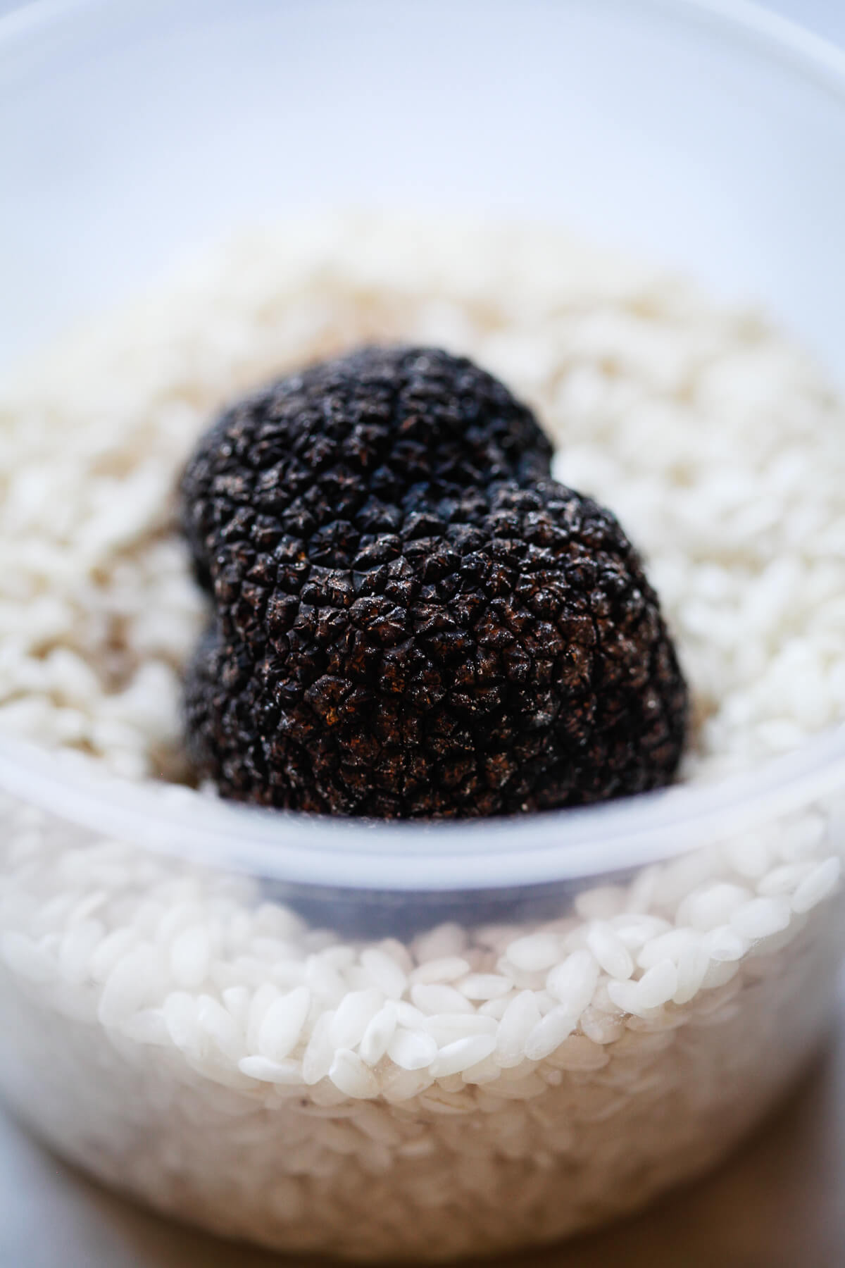A black truffle in a container of rice.