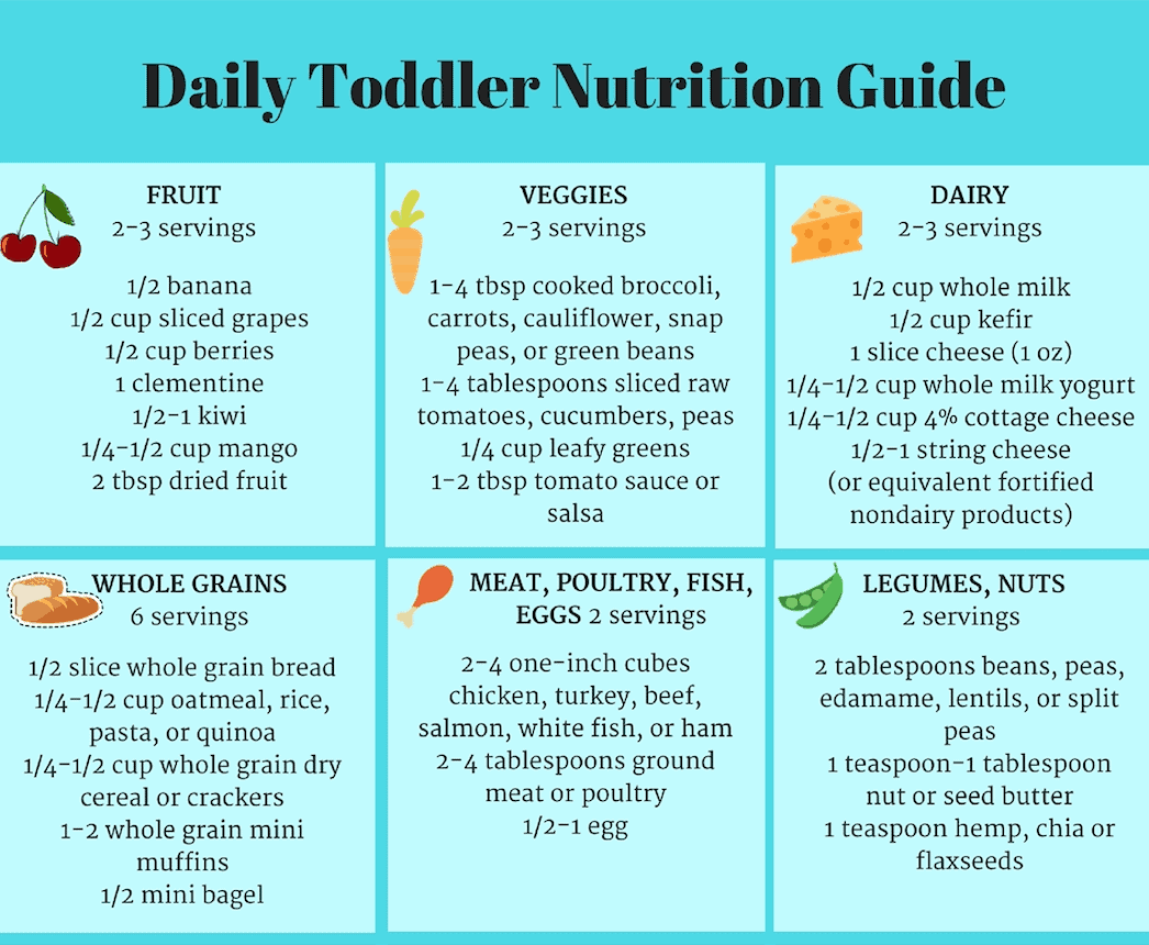Daily Toddler Nutrition Guide Printable Chart