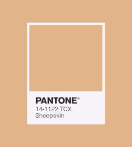 PANTONE 14-1122 Sheepskin