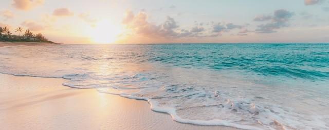 Beautiful Hawaii Sea Shore
