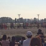 第1回 競馬RUN in 大井競馬場 に出場してきました