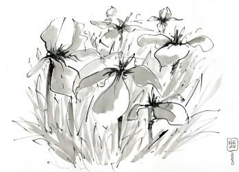 Nezu-garden-2-1800