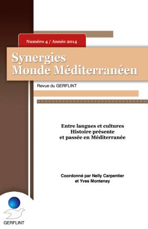 Synergies-Monde-Mediterraneen-N°4-2014