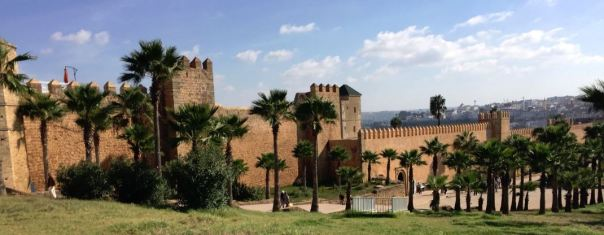 Maroc-infolettre