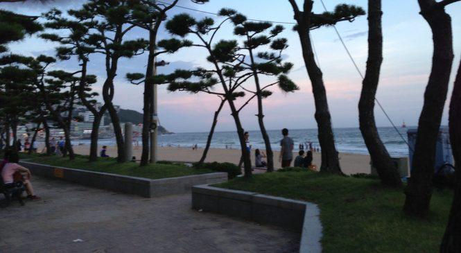 Promenade de bord de mer