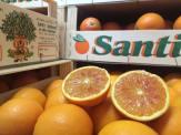 Giacomo Rindone in giro per Roma a vendere le sue arance rosse
