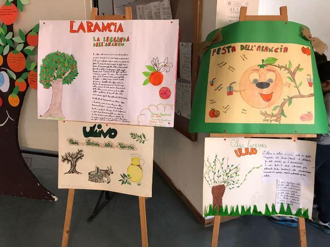 """Santa Maria di Licodia, al Comprensivo """"Don Bosco"""" si parla di salute e ambiente"""