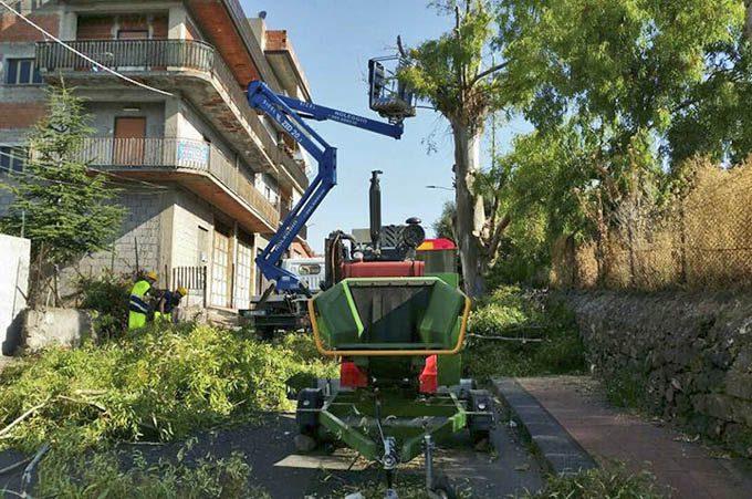 Adrano, Protezione civile mette in sicurezza un albero