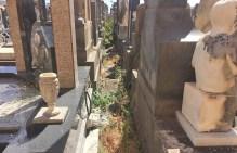 adrano_degrado_cimiteri_15_09_2017_02