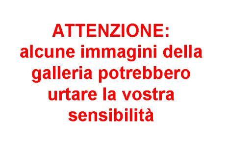 attenzione_immagini_sensibilità_27_08_2018