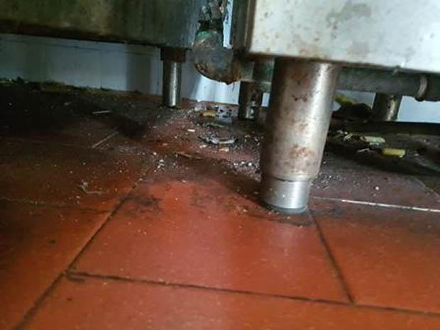 Catania. Condizioni igieniche pessime: denunciati i gestori di un lido