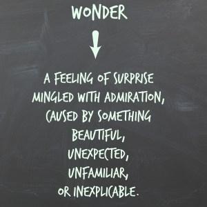 wonder (1)