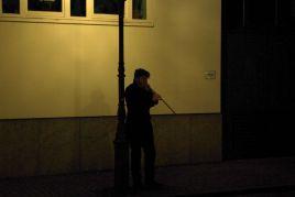 Performance-Palm-R15131-Copyright-Marcel-Oettrich-2014