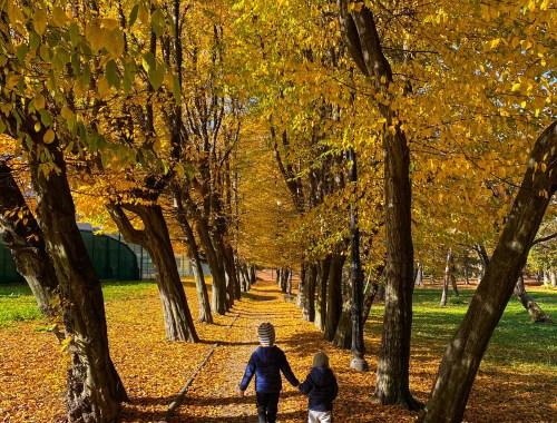 park im. Adama Mickiewicza w Wieliczce