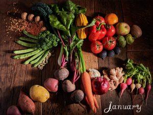 January 2019 Nutrition Newsletter Z Physique