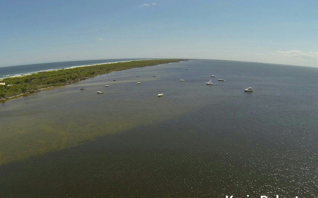 Tices Shoal Aerial Photo | Island Beach State Park | May 2014