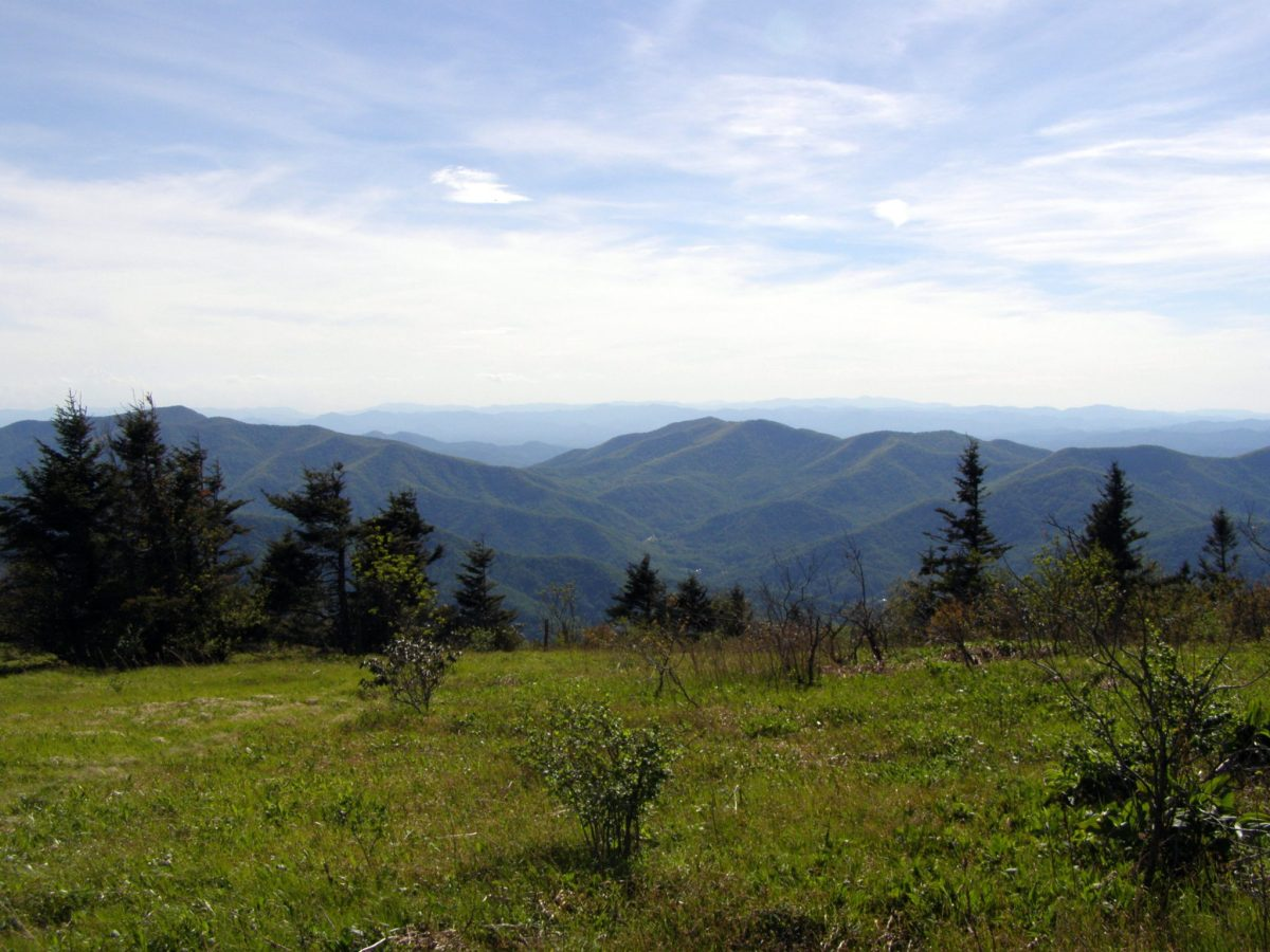 Colbert Ridge to Woody Ridge - Pisgah National Forest, NC