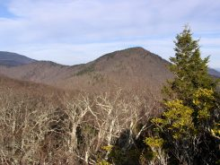 View of Pinnacle from northern cliff on Rocky Knob