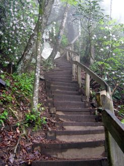 Stairway to the clouds (above High Shoals Falls)